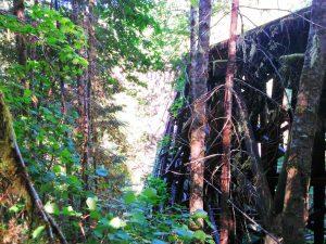 tophill tressle near vernonia springs