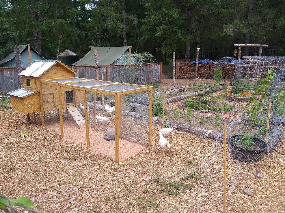 Chicken Coop at Vernonia Springs