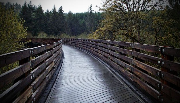 Buxton Bridge on Banks-Vernonia State Trail