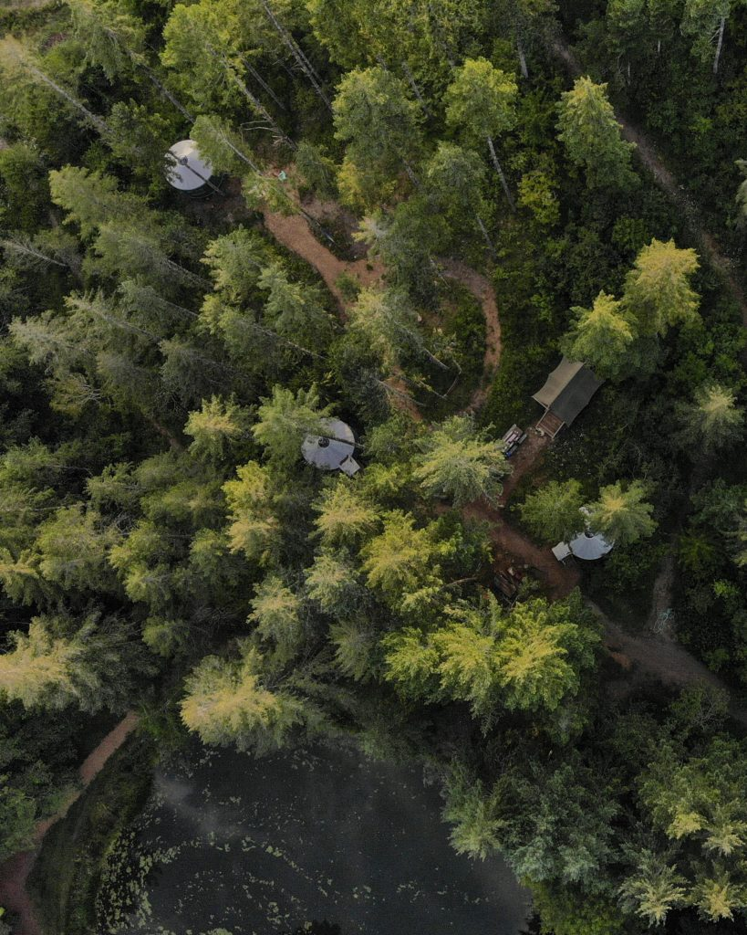 Above Vernonia Springs