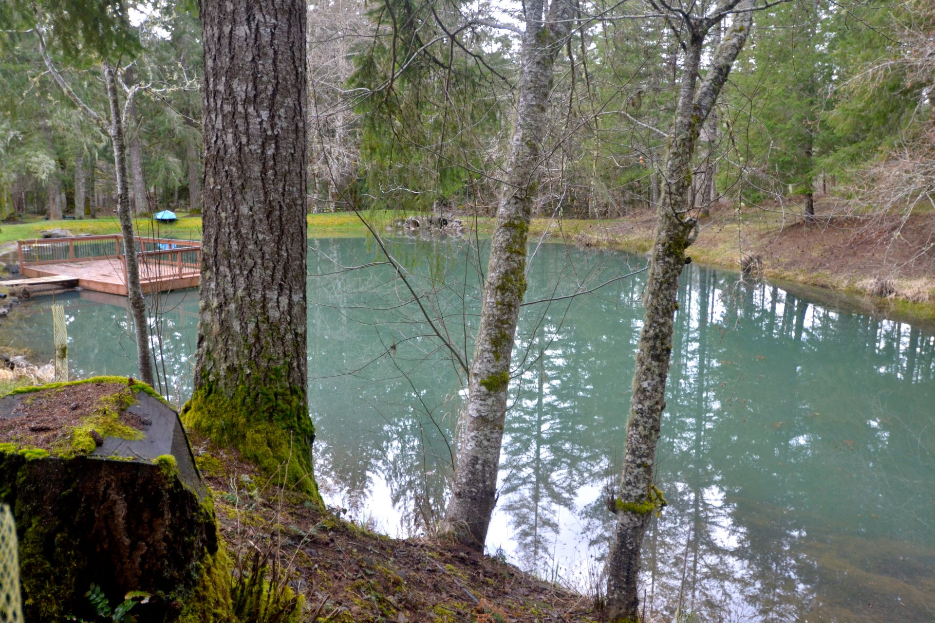 Vernonia Springs receives private park designation